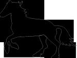 horse-43545_640